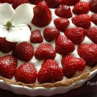 Jordbærtærte med kokosflødeskum ♡